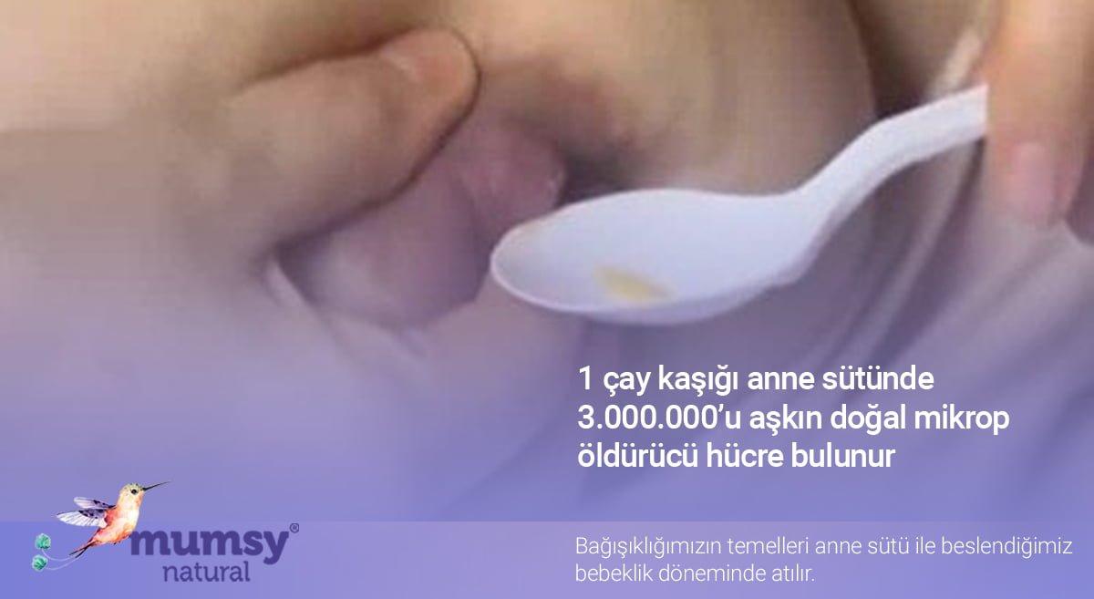 Bebek bağışıklığı ve anne sütü emziren anne annesütü emzirme emzirme sorunları meme ucu yarasi emziren anneler emzirmek sağlık saglıklı beslenme beslenme önerileri saglik sağlıklı saglık bagisiklik bağışıklık sistemi bağışıklık bağışıklık güçlendirici dünya bağışıklık haftası
